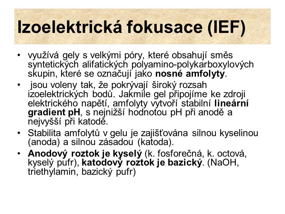 Izoelektrická fokusace (IEF) využívá gely s velkými póry, které obsahují směs syntetických alifatických polyamino-polykarboxylových skupin, které se o