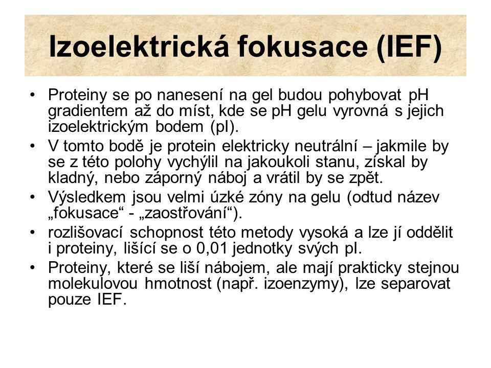 Izoelektrická fokusace (IEF) IEF se obvykle provádí v 3-4% polyakrylamidových gelech, nebo v agarose.