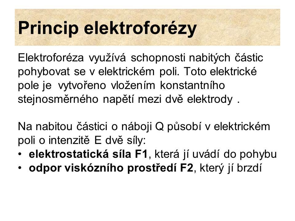 Princip elektroforézy Elektroforéza využívá schopnosti nabitých částic pohybovat se v elektrickém poli. Toto elektrické pole je vytvořeno vložením kon