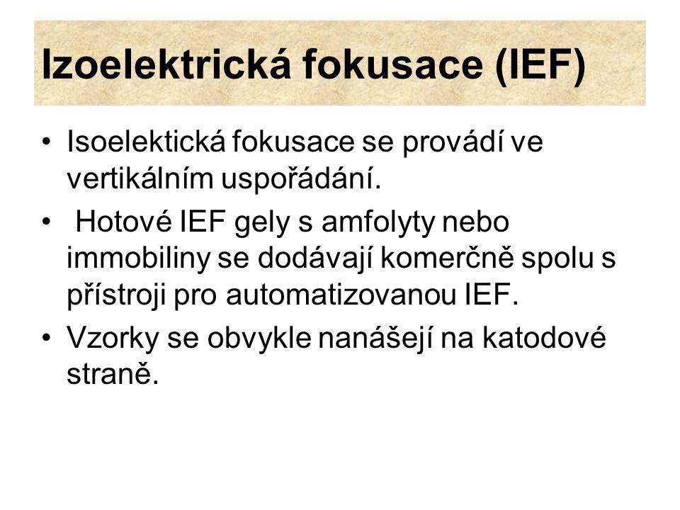 Izoelektrická fokusace (IEF) Isoelektická fokusace se provádí ve vertikálním uspořádání. Hotové IEF gely s amfolyty nebo immobiliny se dodávají komerč