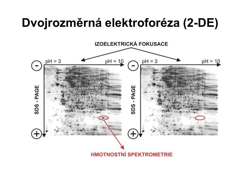 Identifikace proteinů: Hmotnostní spektrometrie umožňuje přesné měření molekulární hmotnosti široké škály látek.