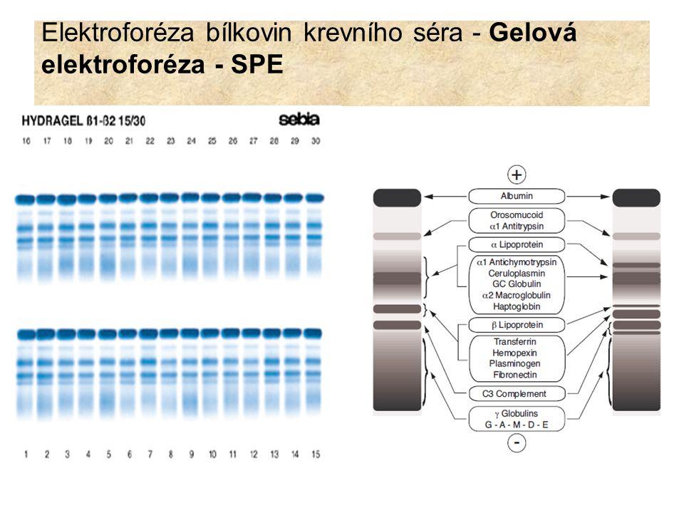 Po elektroforetické separaci jsou proteinové frakce: 1.