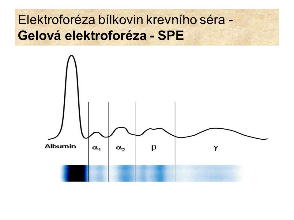 Elektroforéza bílkovin krevního séra: Vysokorozlišovací elektroforéza (HR elektroforéza) Bílkoviny séra dělí na přibližně 10 frakcí.