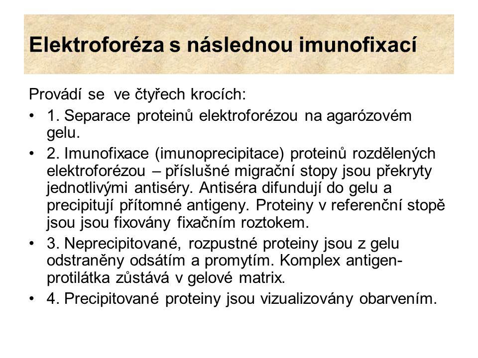 Elektroforéza s následnou imunofixací Provádí se ve čtyřech krocích: 1. Separace proteinů elektroforézou na agarózovém gelu. 2. Imunofixace (imunoprec