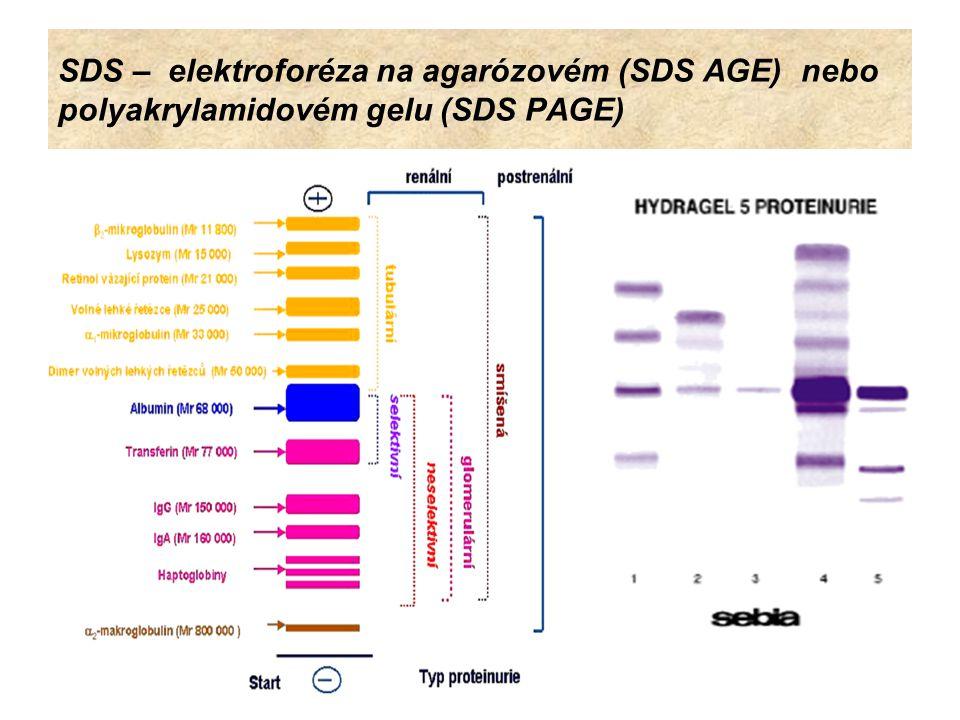 Elektroforéza bílkovin mozkomíšního moku Celá řada onemocnění CSF se vyznačuje zvýšením proteinů v mozkomíšním moku v důsledku zvýšené permeability hemato- encefalické bariéry nebo zvýšené syntézy imunoglobulinů - v první řadě imunoglobulinu (Ig) ve třídě IgG v CNS.