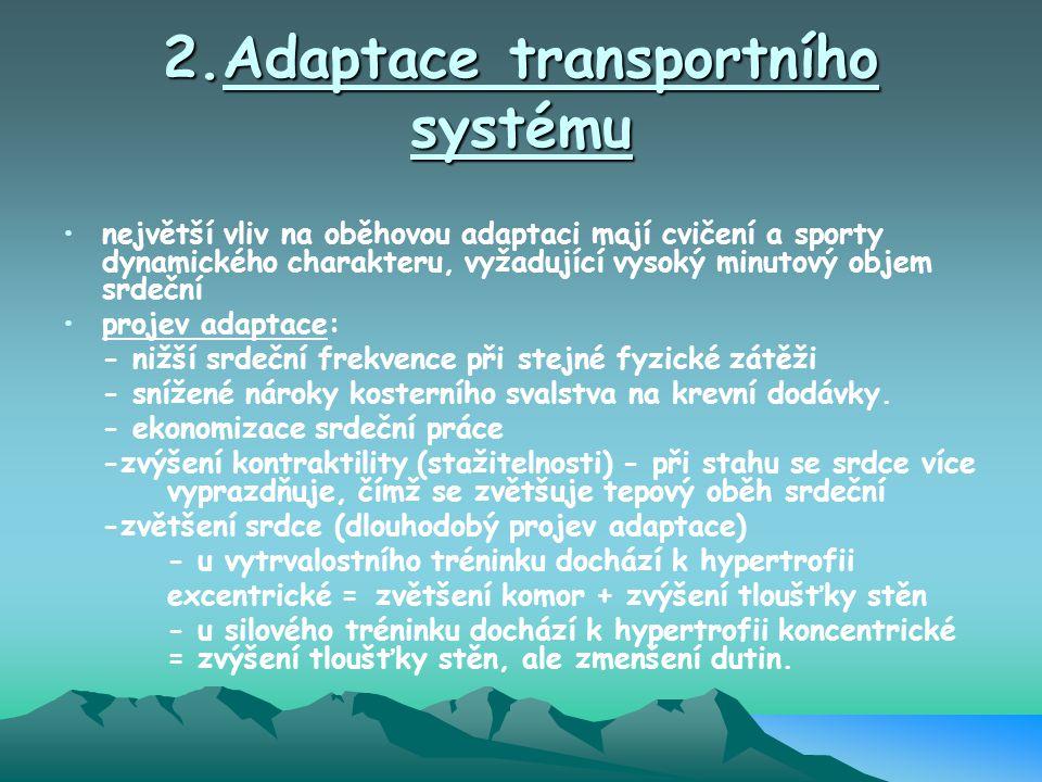2.Adaptace transportního systému největší vliv na oběhovou adaptaci mají cvičení a sporty dynamického charakteru, vyžadující vysoký minutový objem srd