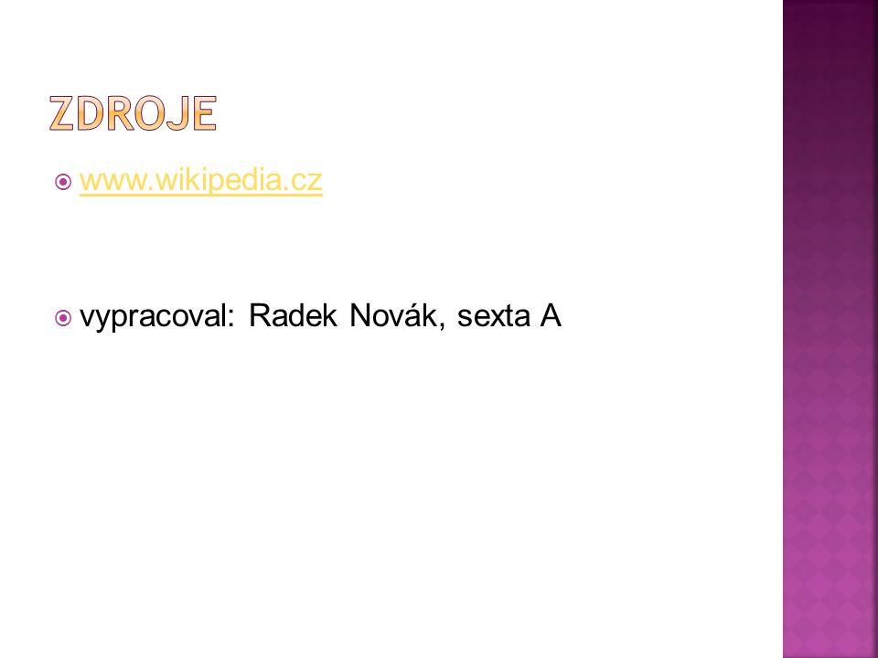  www.wikipedia.cz www.wikipedia.cz  vypracoval: Radek Novák, sexta A