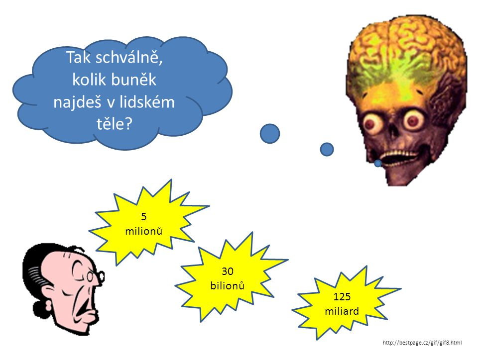 Tak schválně, kolik buněk najdeš v lidském těle? 5 milionů 30 bilionů 125 miliard http://bestpage.cz/gif/gif8.html