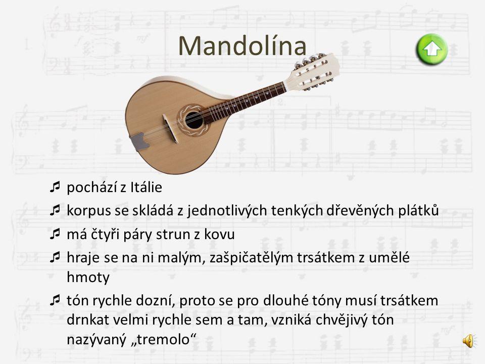 Dřevěné drnkací harfa mandolína kytara
