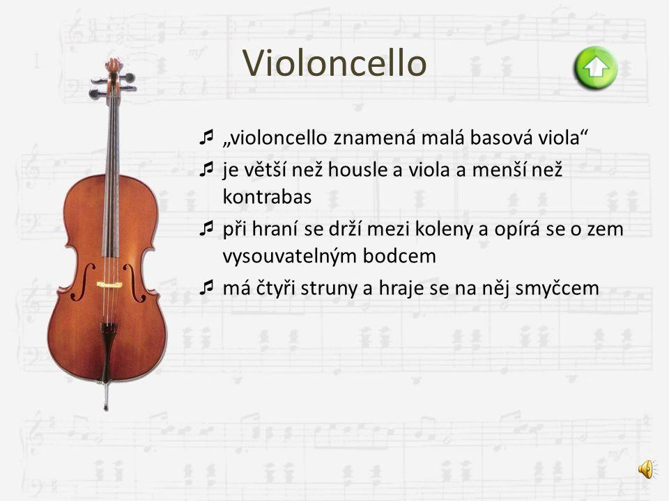 Viola  o něco větší než housle, a proto i nižší zvuk  čtyři struny, které se rozechvívají smyčcem, na kterém jsou napnuty koňské žíně  struny se na