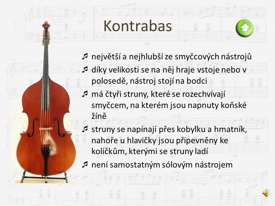 """Violoncello  """"violoncello znamená malá basová viola""""  je větší než housle a viola a menší než kontrabas  při hraní se drží mezi koleny a opírá se o"""