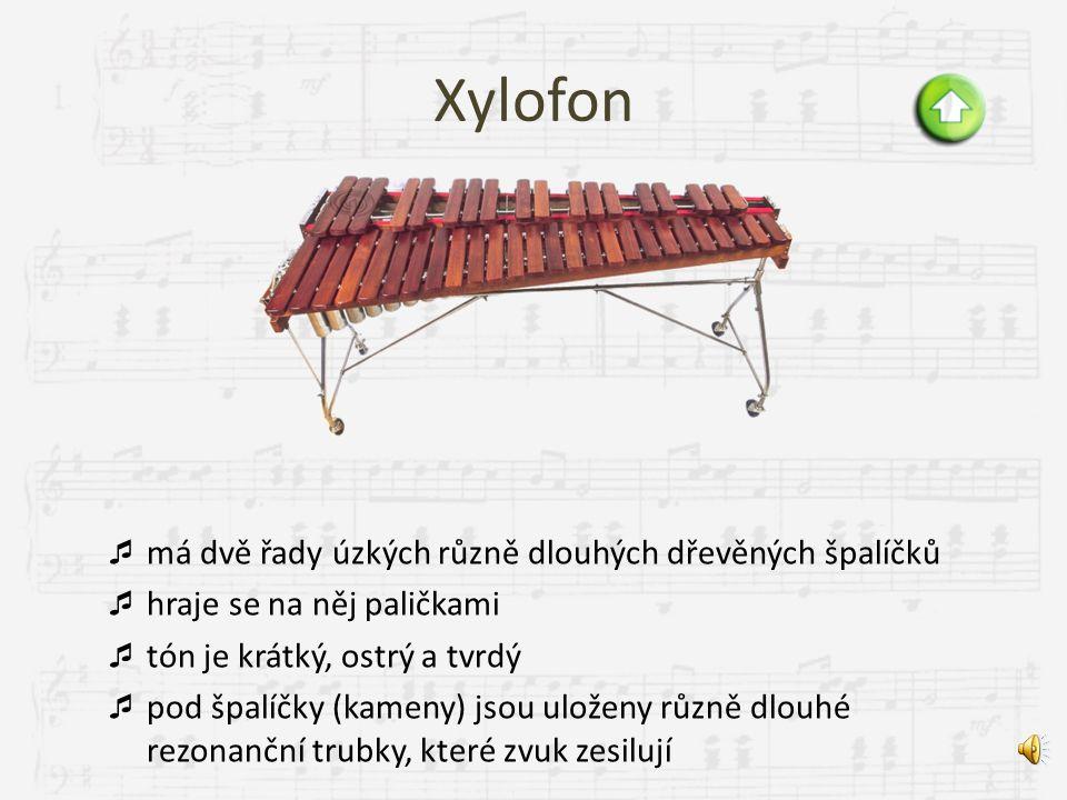 Buben  jedním z nejstarších lidských hudebních nástrojů  skládá se z blány (membrány) natažené na rezonátoru  zvuk vzniká pomocí úderu ruky, paliče