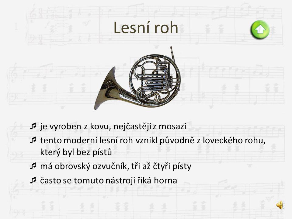 Pozoun  vznikl ve středověku  je vyroben z kovu, nejčastěji z mosazi  skládá se z ozvučné trubice, ozvučníku a kotlíkového nátrubku  spodní oblouk