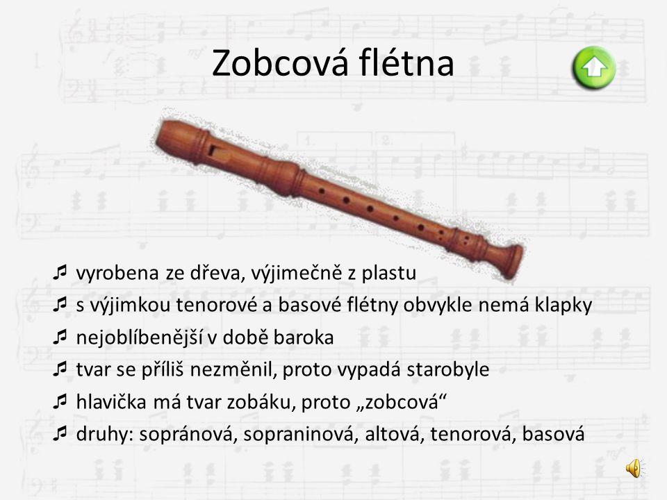 Dřevěné dechové zobcová flétna příčná flétna klarinet hoboj anglický roh fagot saxofon