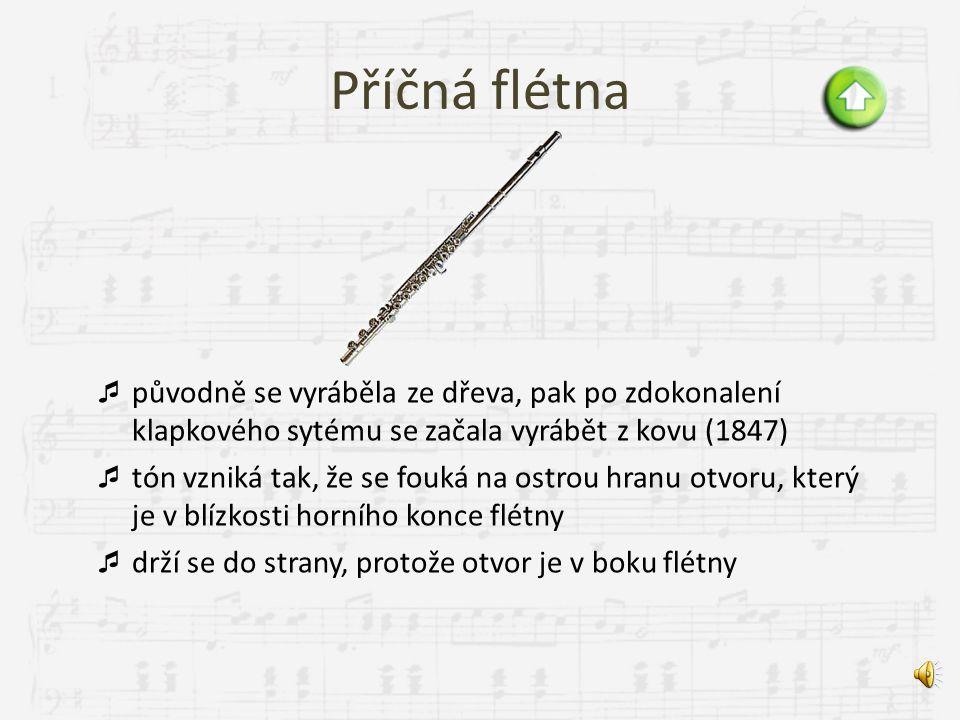Zobcová flétna  vyrobena ze dřeva, výjimečně z plastu  s výjimkou tenorové a basové flétny obvykle nemá klapky  nejoblíbenější v době baroka  tvar