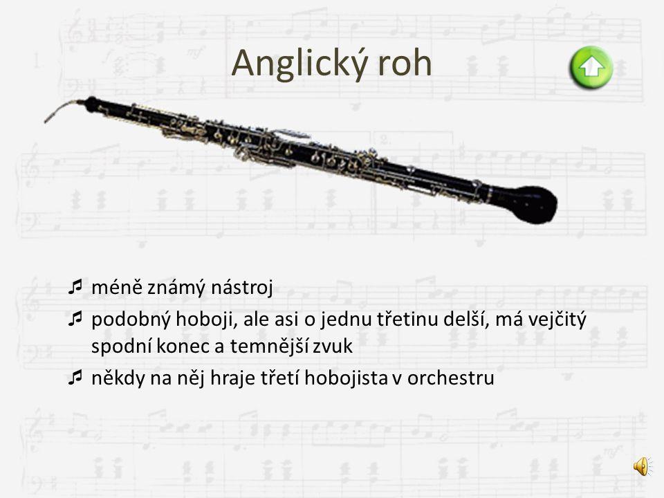 Hoboj  kónická kuželovitě vrtná ozvučná trubice, proto má velmi výrazný zvuk  fouká se do dvojitého plátku z rákosu, vzniká trochu nosový zvuk  důl