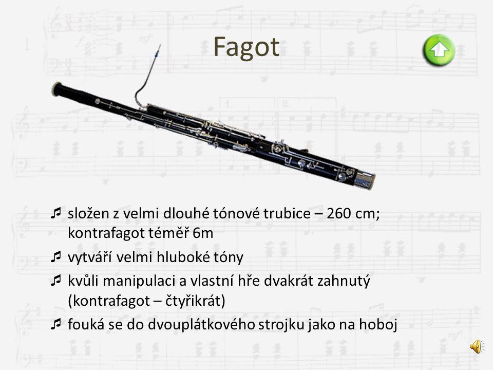 Saxofon  postaven Adolfem Saxem v roce 1840 v Paříži  vyroben z kovu, ale protože má stejný náustek s jedním plátkem jako klarinet, řadí se k dřevěn