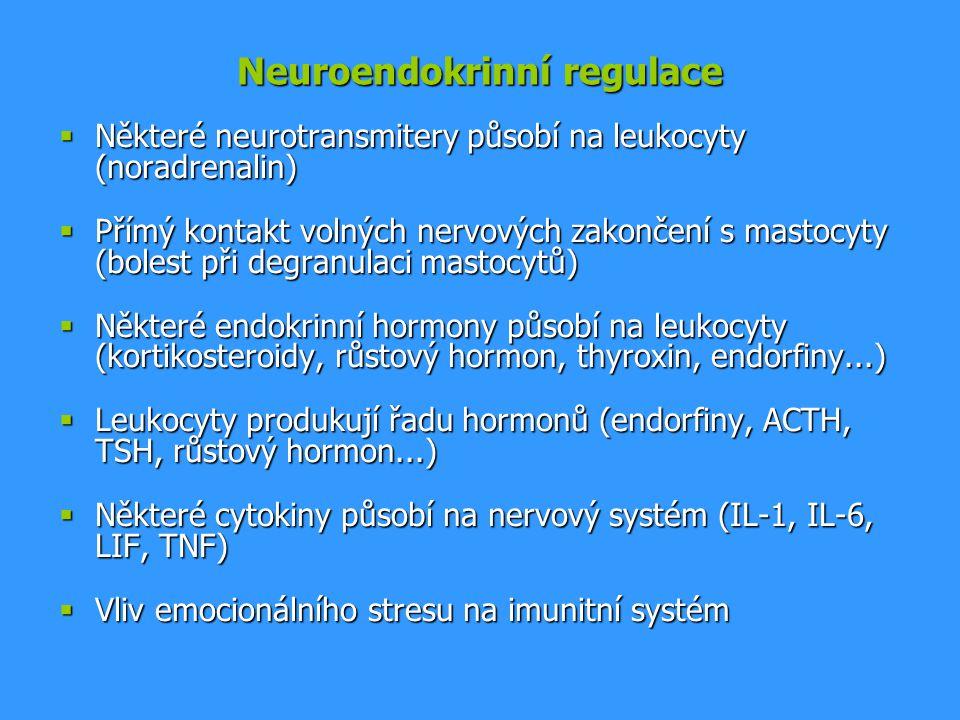 Neuroendokrinní regulace  Některé neurotransmitery působí na leukocyty (noradrenalin)  Přímý kontakt volných nervových zakončení s mastocyty (bolest