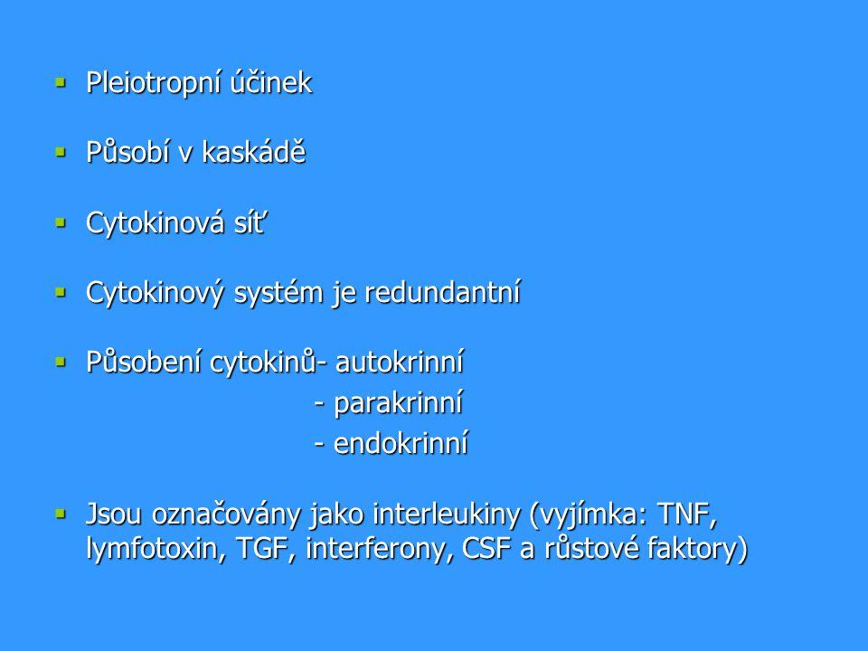  Pleiotropní účinek  Působí v kaskádě  Cytokinová síť  Cytokinový systém je redundantní  Působení cytokinů- autokrinní - parakrinní - endokrinní