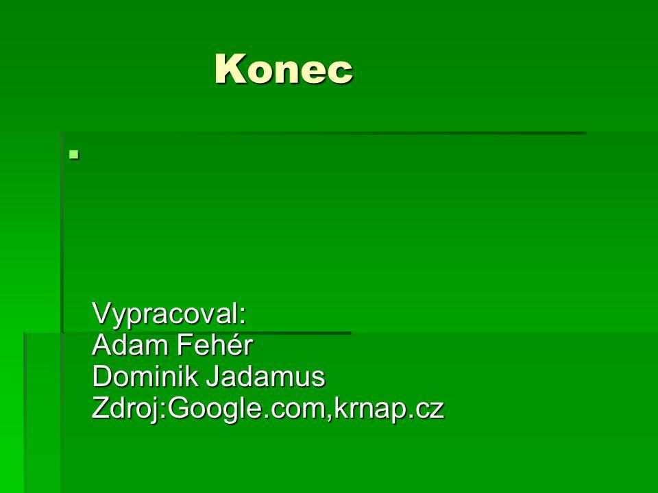 Konec Konec  Vypracoval: Adam Fehér Dominik Jadamus Zdroj:Google.com,krnap.cz