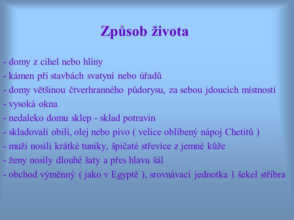 Chetitština - patří do chetito-luvijské větve indoevropských jazyků - část z nich psala písmem klínovým a část hieroglyfickým - chetitské písemnictví bylo poměrně bohaté - dosud bylo nalezeno asi 20 000 textů ( hymny, texty historické a právnické, mýty…) psaných klínovým písmem - chetitštinu rozluštil v roce 1915 Bedřich Hrozný