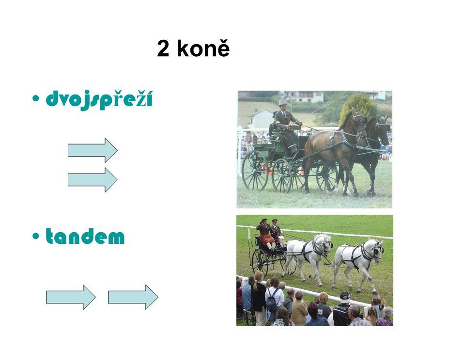 2 koně dvojsp ř e ž í tandem