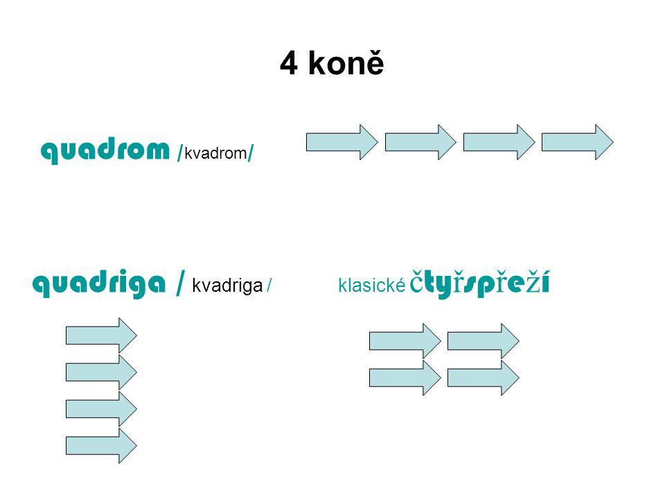 4 koně quadrom / kvadrom / quadriga / kvadriga / klasické č ty ř sp ř e ž í