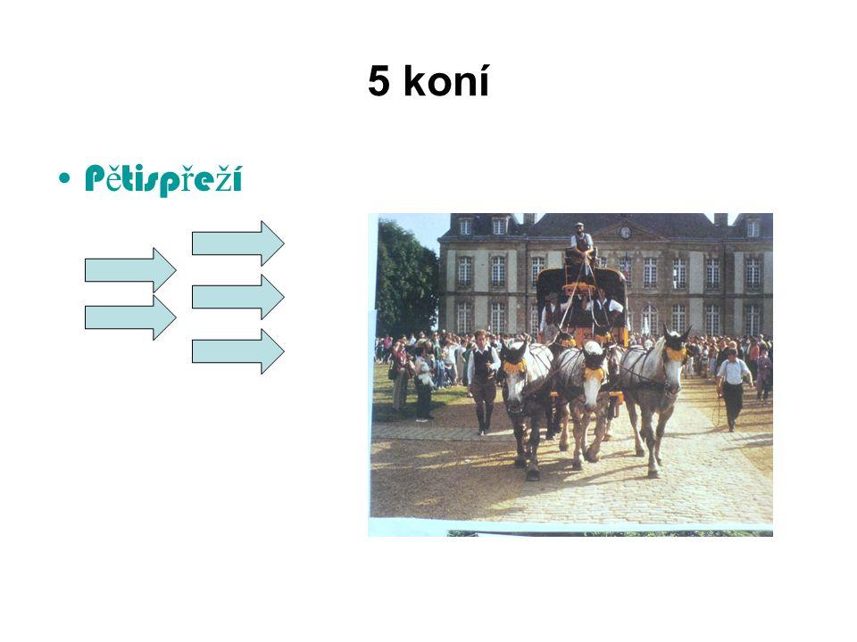 5 koní P ě tisp ř e ž í