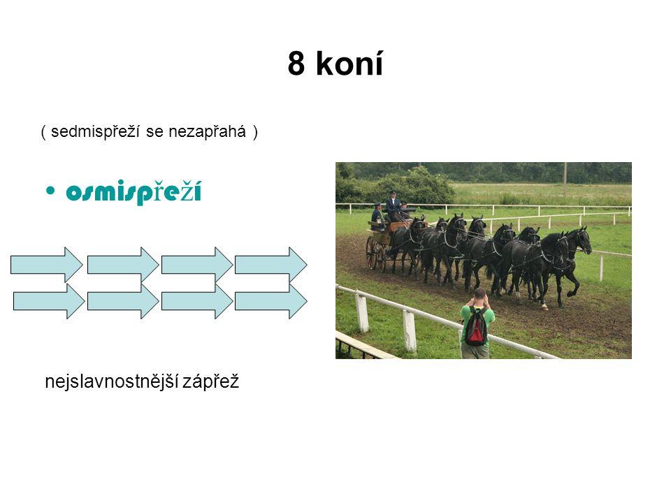 8 koní ( sedmispřeží se nezapřahá ) osmisp ř e ž í nejslavnostnější zápřež