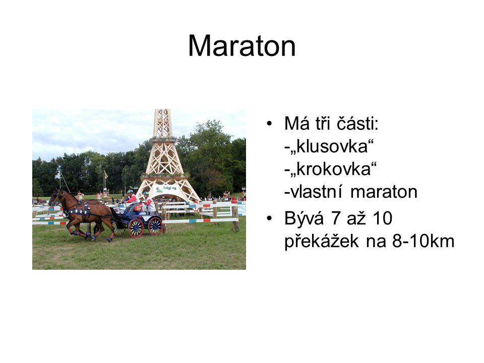"""Maraton Má tři části: -""""klusovka"""" -""""krokovka"""" -vlastní maraton Bývá 7 až 10 překážek na 8-10km"""