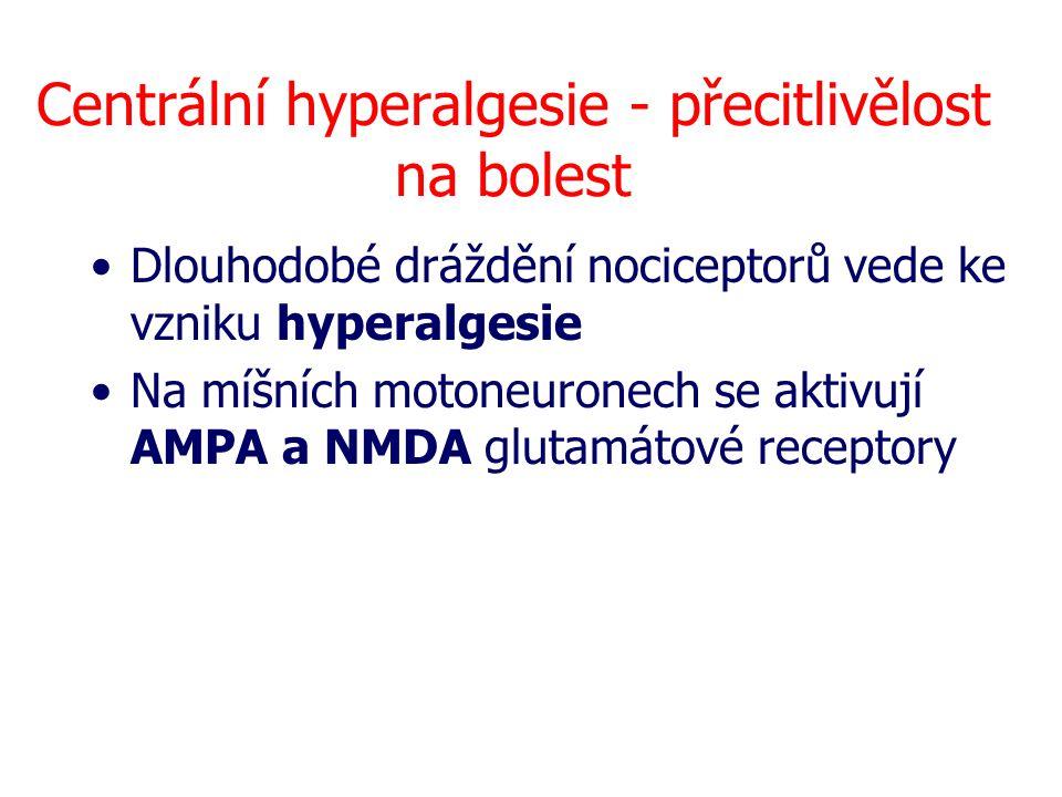 Centrální hyperalgesie - přecitlivělost na bolest Dlouhodobé dráždění nociceptorů vede ke vzniku hyperalgesie Na míšních motoneuronech se aktivují AMP