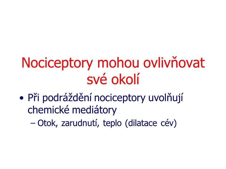 Nociceptory mohou ovlivňovat své okolí Při podráždění nociceptory uvolňují chemické mediátory –Otok, zarudnutí, teplo (dilatace cév)