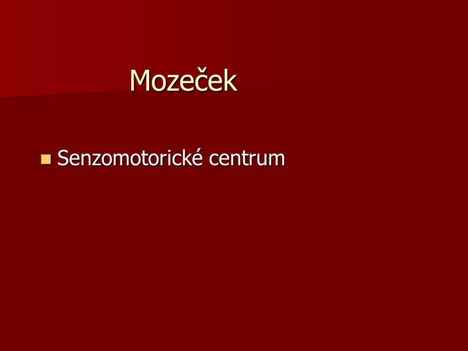 Mozeček Senzomotorické centrum Senzomotorické centrum