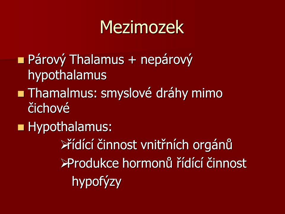Mezimozek Párový Thalamus + nepárový hypothalamus Párový Thalamus + nepárový hypothalamus Thamalmus: smyslové dráhy mimo čichové Thamalmus: smyslové d