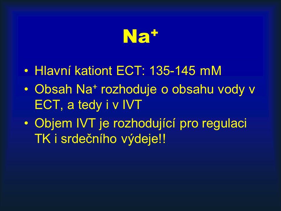 Na + Hlavní kationt ECT: 135-145 mM Obsah Na + rozhoduje o obsahu vody v ECT, a tedy i v IVT Objem IVT je rozhodující pro regulaci TK i srdečního výdeje!!