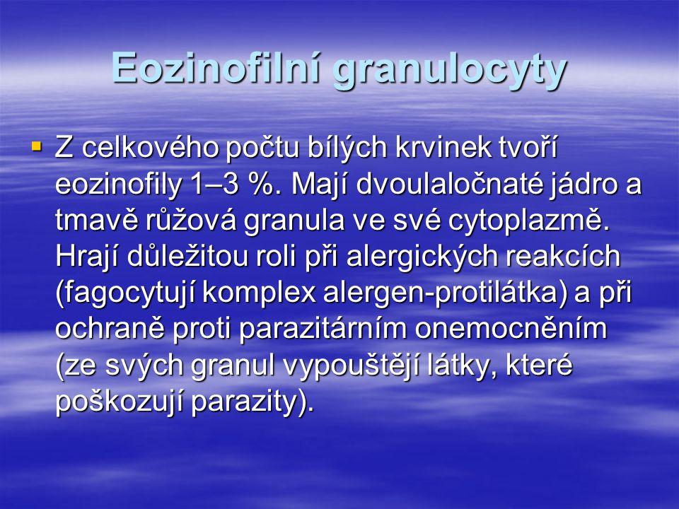 Eozinofilní granulocyty  Z celkového počtu bílých krvinek tvoří eozinofily 1–3 %. Mají dvoulaločnaté jádro a tmavě růžová granula ve své cytoplazmě.