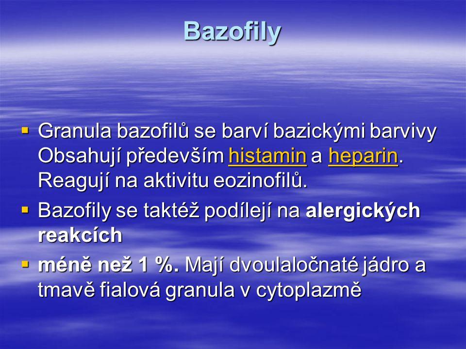 Bazofily  Granula bazofilů se barví bazickými barvivy Obsahují především histamin a heparin. Reagují na aktivitu eozinofilů. histaminheparinhistaminh