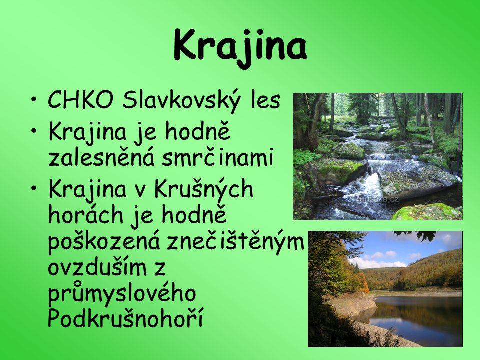 Krajina CHKO Slavkovský les Krajina je hodně zalesněná smrčinami Krajina v Krušných horách je hodně poškozená znečištěným ovzduším z průmyslového Podk
