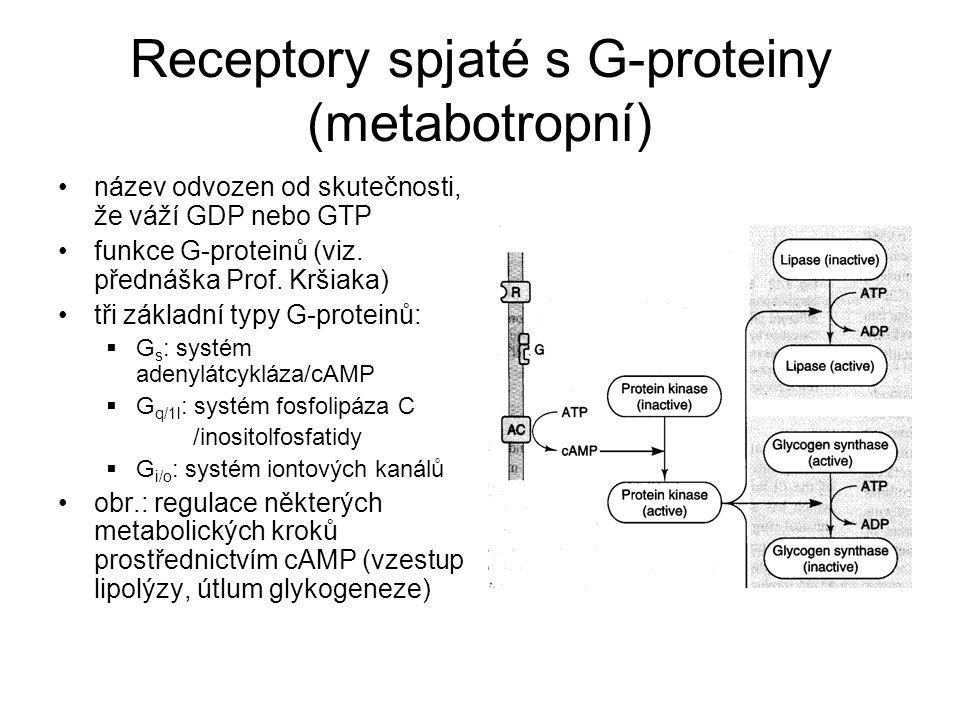 Receptory spjaté s G-proteiny (metabotropní) název odvozen od skutečnosti, že váží GDP nebo GTP funkce G-proteinů (viz.