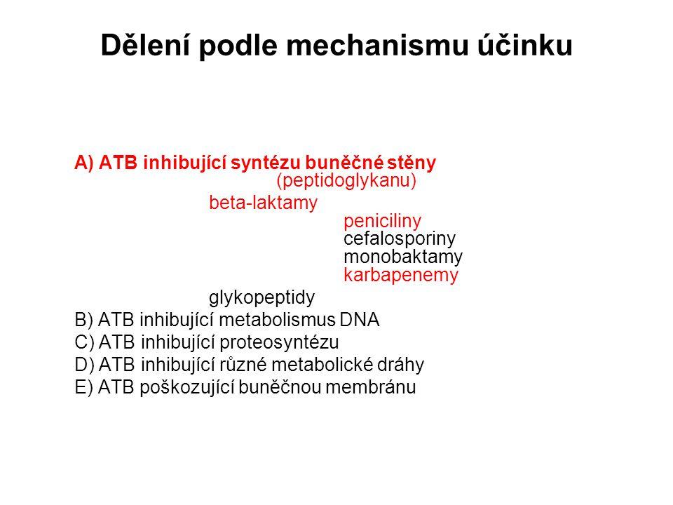 Dělení podle mechanismu účinku A) ATB inhibující syntézu buněčné stěny (peptidoglykanu) beta-laktamy peniciliny cefalosporiny monobaktamy karbapenemy glykopeptidy B) ATB inhibující metabolismus DNA C) ATB inhibující proteosyntézu D) ATB inhibující různé metabolické dráhy E) ATB poškozující buněčnou membránu