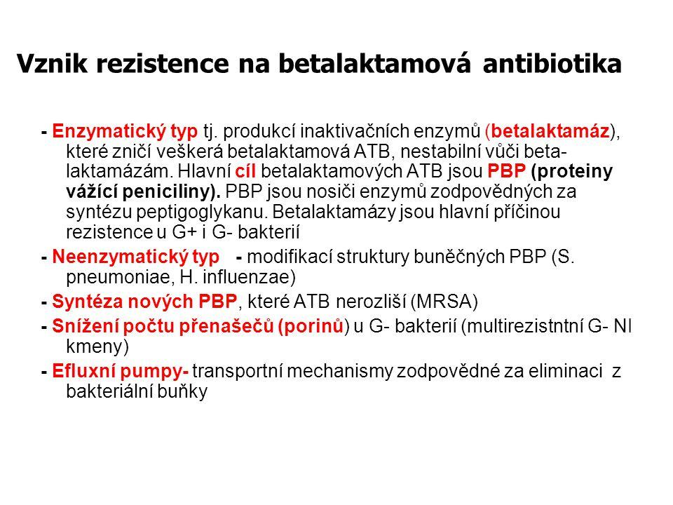 Vznik rezistence na betalaktamová antibiotika - Enzymatický typ tj.