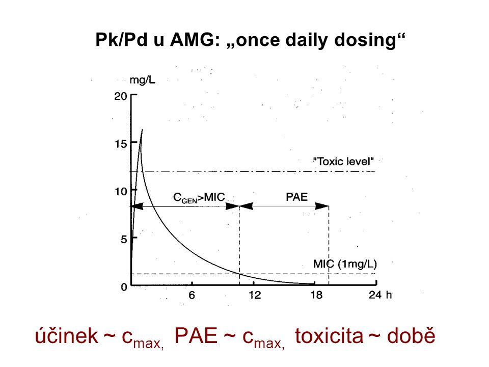 "Pk/Pd u AMG: ""once daily dosing účinek ~ c max, PAE ~ c max, toxicita ~ době"