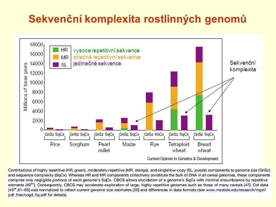 Sekvenční komplexita rostlinných genomů vysoce repetitivní sekvence středně repetitivní sekvence jedinečné sekvence Sekvenční komplexita