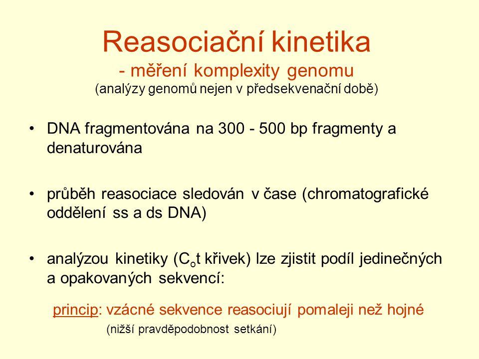 Reasociační kinetika - měření komplexity genomu (analýzy genomů nejen v předsekvenační době) DNA fragmentována na 300 - 500 bp fragmenty a denaturován