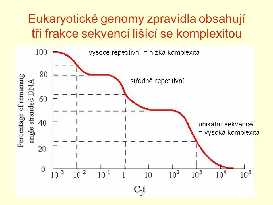 Eukaryotické genomy zpravidla obsahují tři frakce sekvencí lišící se komplexitou vysoce repetitivní = nízká komplexita středně repetitivní unikátní se