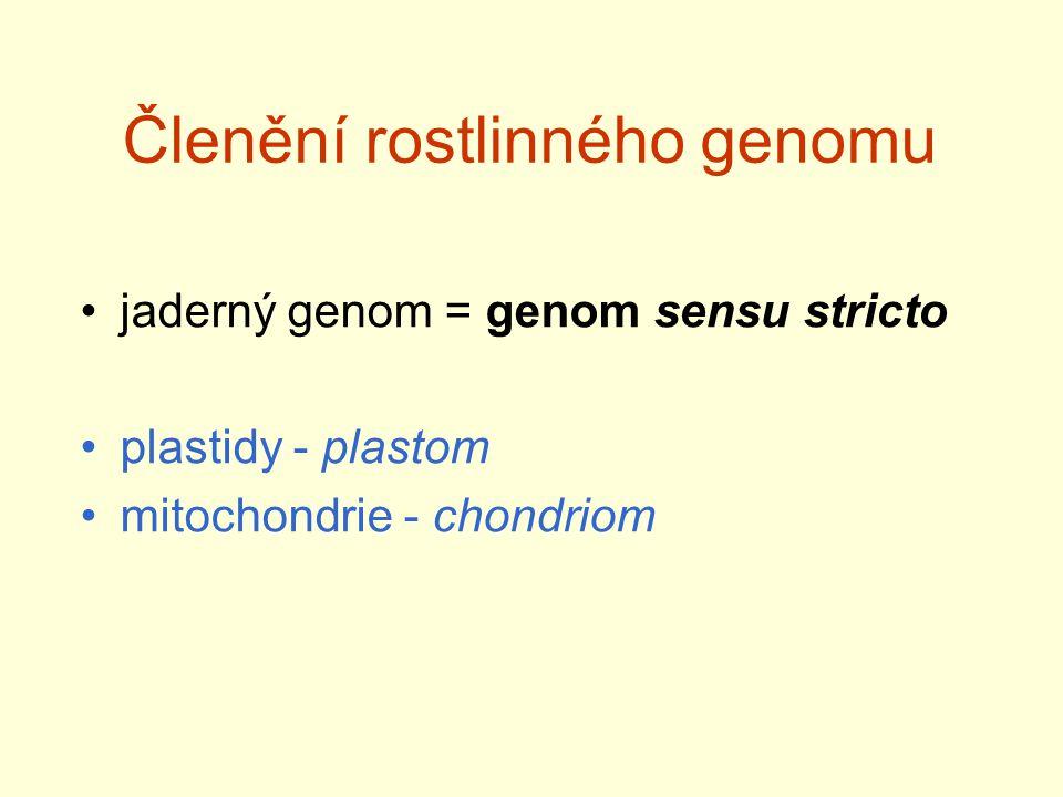 Polyploidie - polyploidizace výrazně zvyšuje plasticitu genomu - významná role v evoluci (nejen rostlin) - paleopolyploidie - neopolyploidie – nedošlo k významné diploidizaci - allopolyploidie x autopolyploidie (triploidní most) Výhody polyploidie: vyšší plasticita, neofuncionalizace (hlízkové baktérie, dužnaté plody, ….)