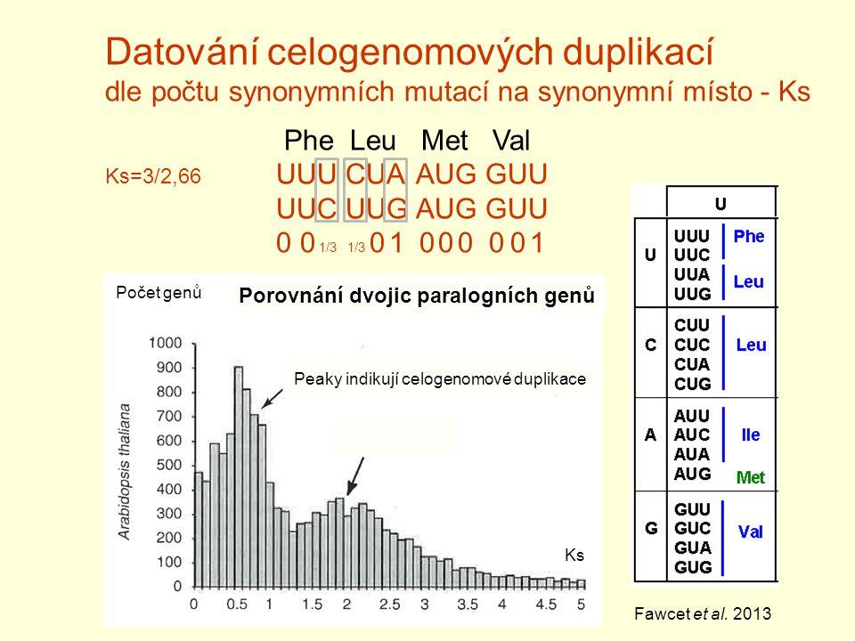Datování celogenomových duplikací dle počtu synonymních mutací na synonymní místo - Ks Phe Leu Met Val Ks=3/2,66 UUU CUA AUG GUU UUC UUG AUG GUU 0 0 1/3 1/3 0 1 0 0 0 0 0 1 Ks Počet genů Fawcet et al.