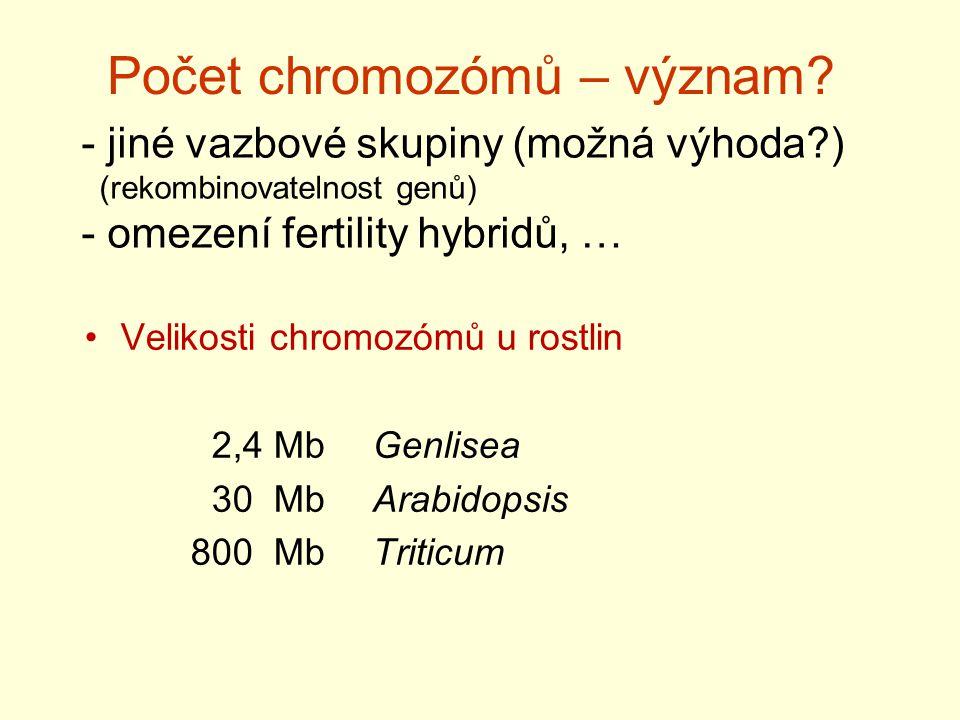 Počet chromozómů – význam.