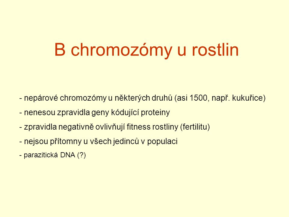 B chromozómy u rostlin - nepárové chromozómy u některých druhů (asi 1500, např.