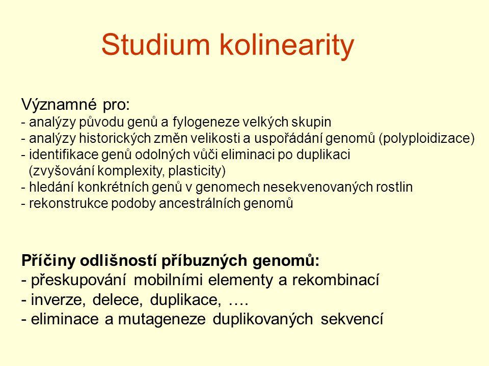Studium kolinearity Významné pro: - analýzy původu genů a fylogeneze velkých skupin - analýzy historických změn velikosti a uspořádání genomů (polyplo